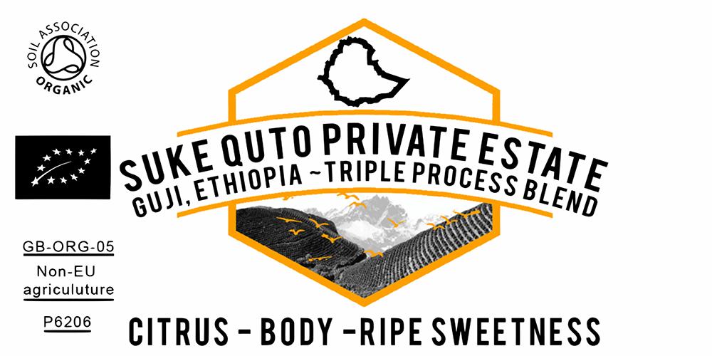 ORGANIC ETHIOPIAN SUKE QUTO TRIPLE PROCESS COFFEE BLEND