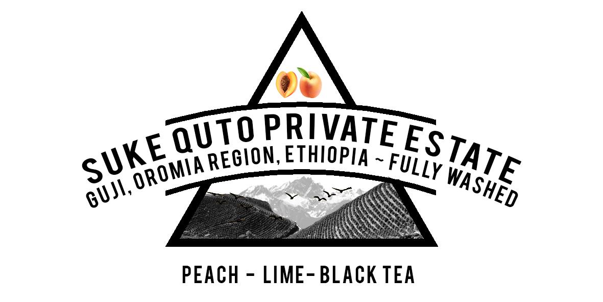 ETHIOPIA SUKE QUTO PRIVATE ESTATE COFFEE