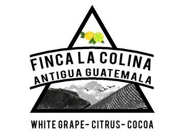 GUATEMALAN LA COLINA 2020