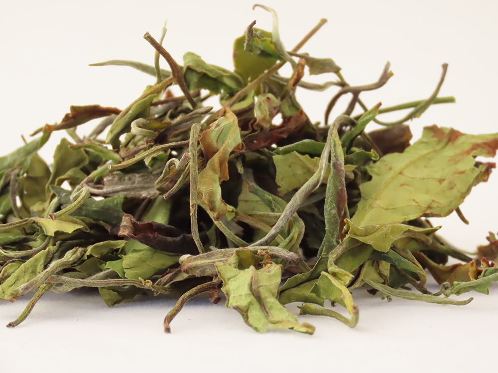 Indian Nilgiri Tea Company -Peony White tea
