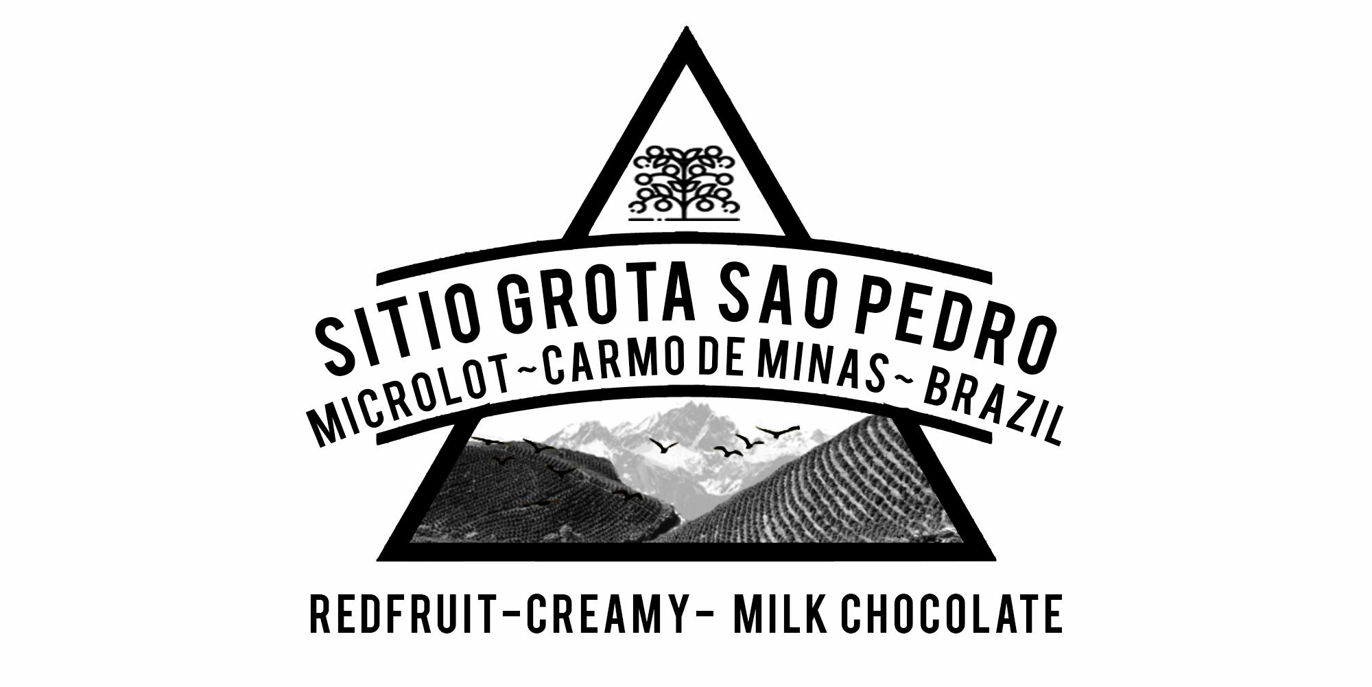 SITIO GROTA MICROLOT, CARMO DE MINAS BRAZIL COFFEE