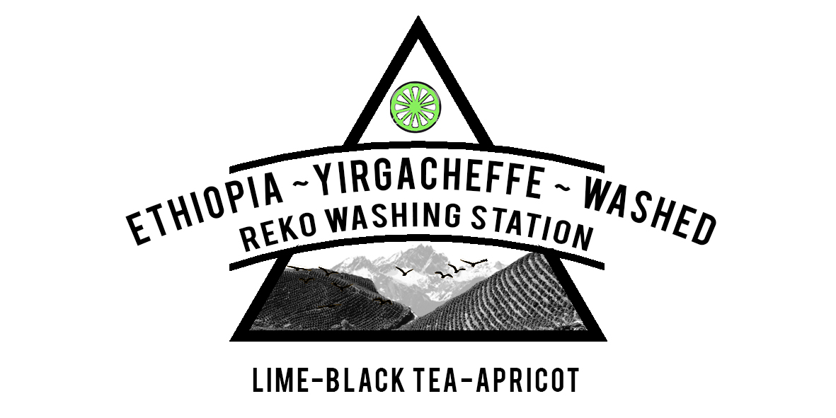 ETHIOPIA REKO WASHING STATION