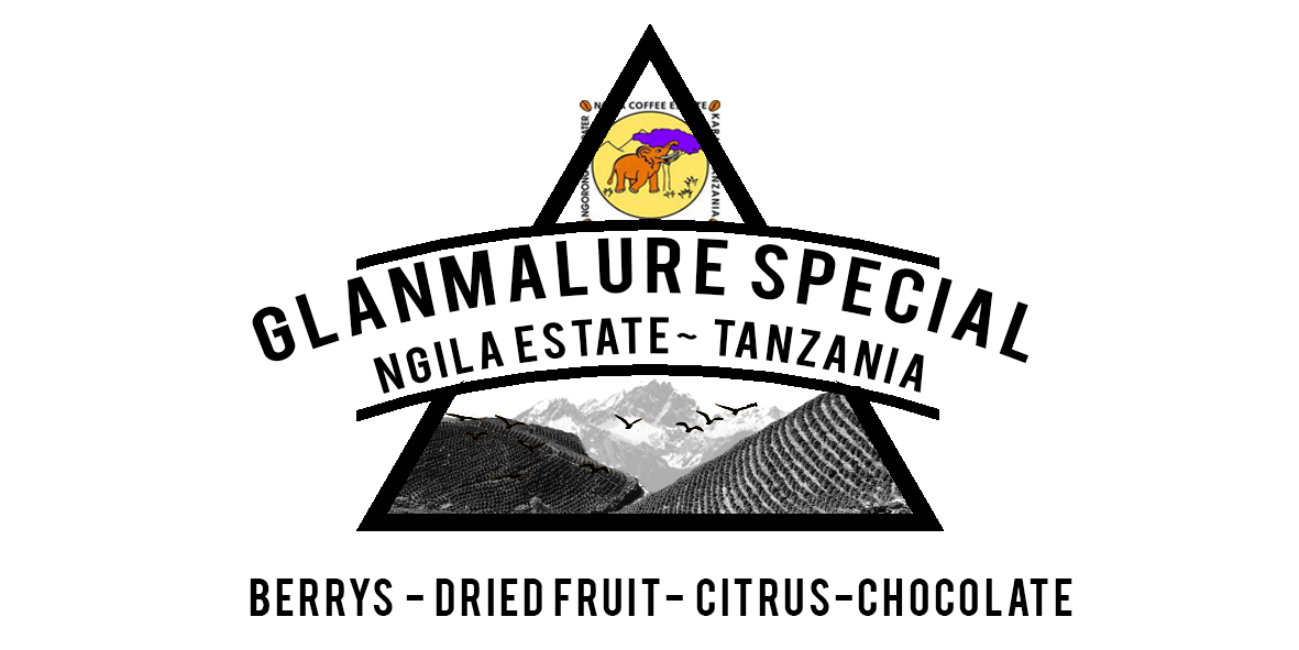 TANZANIA NGILA ESTATE COFFEE