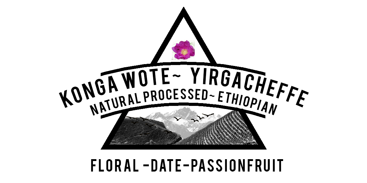 Ethiopian Yirgacheffe Konga Wote Washing station