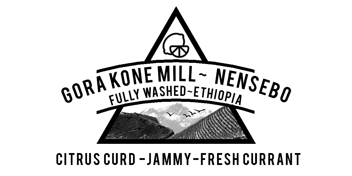ETHIOPIAN GORA KONE MILL WASHED ETHIOPIAN COFFEE