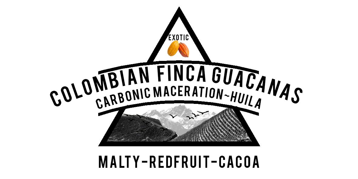COLOMBIAN FINCA GUACANAS CARBONIC MACERATION