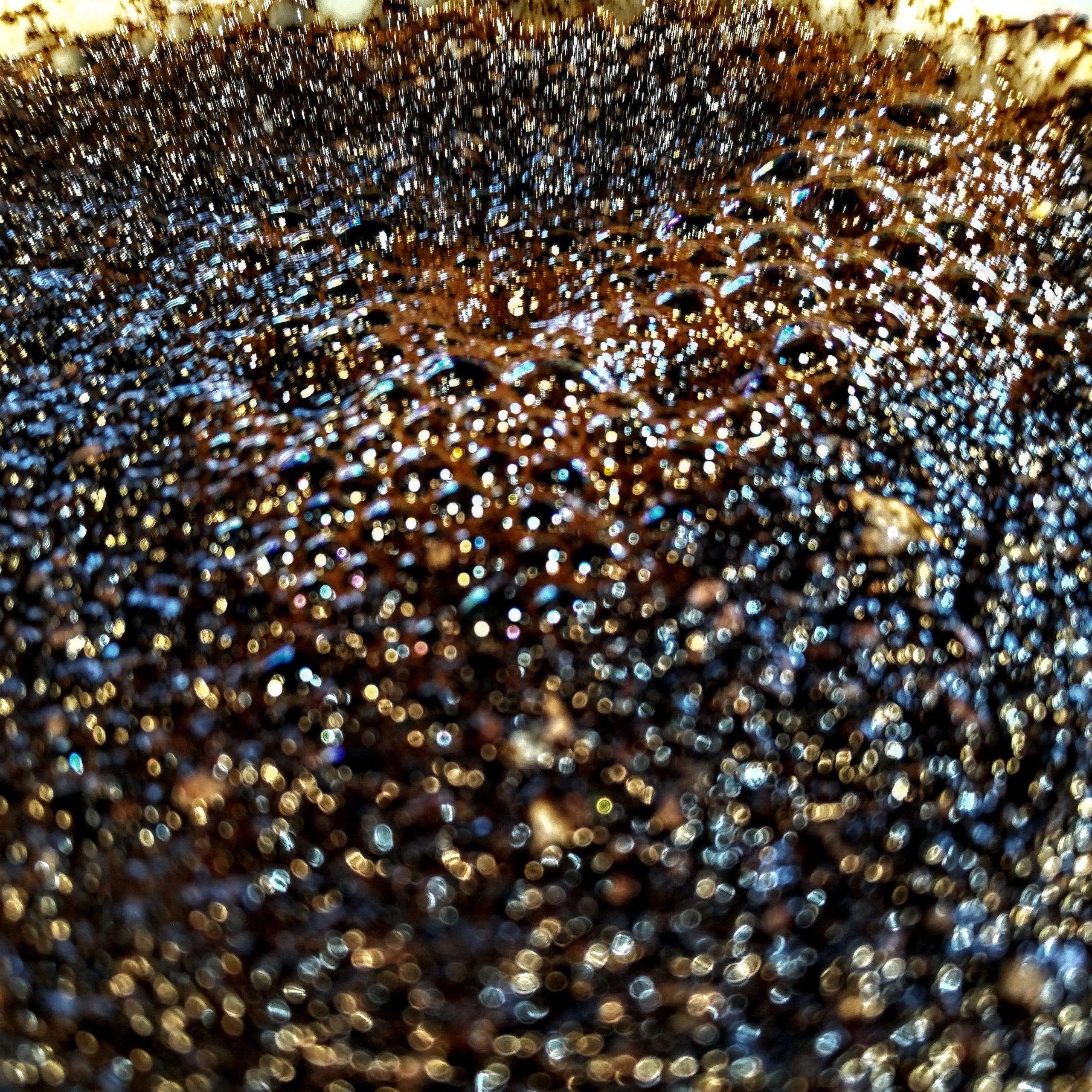 Coffee Bloom, tasting coffee processes