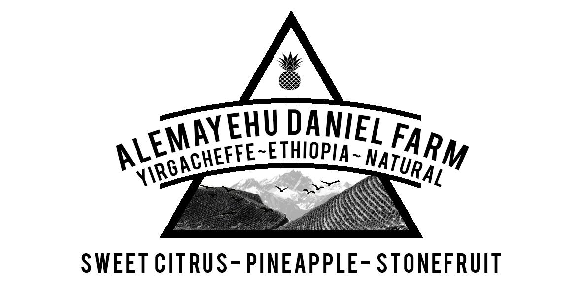ETHIOPIAN YIRGACHEFFE ALEMAYEHU DANIEL