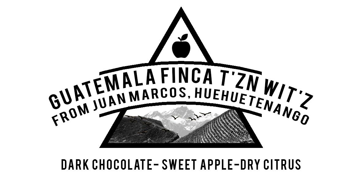 Finca T'zn Wit'z, from Juan Marcos. Huehuetenango Guatemala