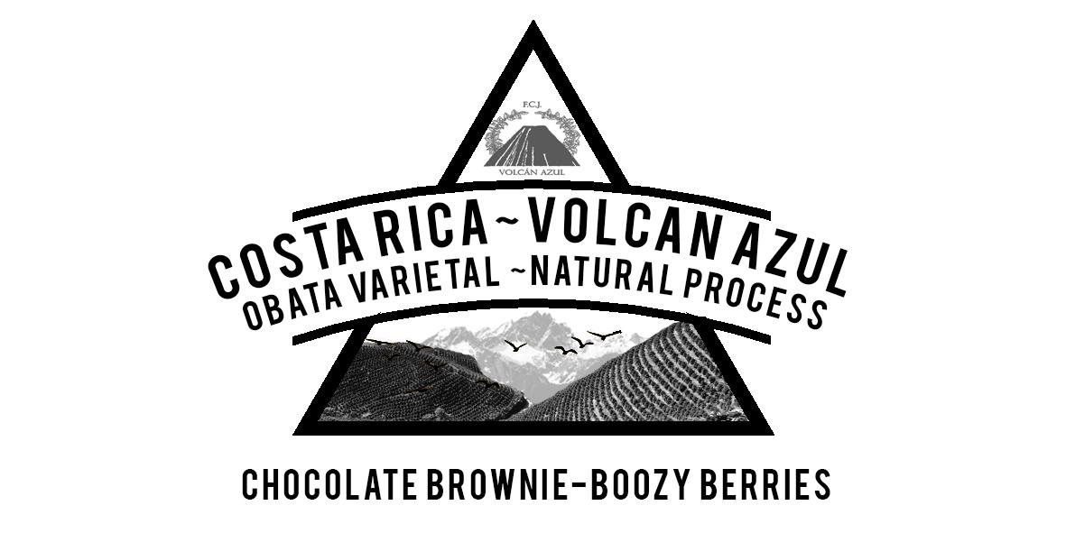 Costa Rica Volcan Azul OBATA varietal NATURAL process