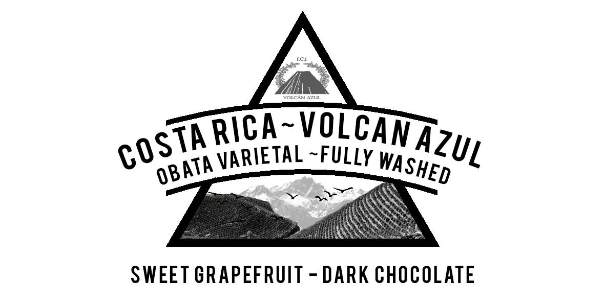 Costa Rica Volcan Azul Obata Varietal Fully Washed
