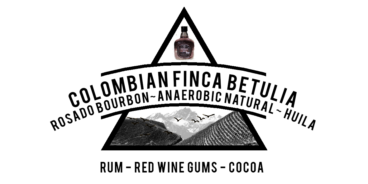 COLOMBIAN ROSADO BOURBON FINCA BETULIA